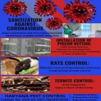 Pest Control Service in Haryana